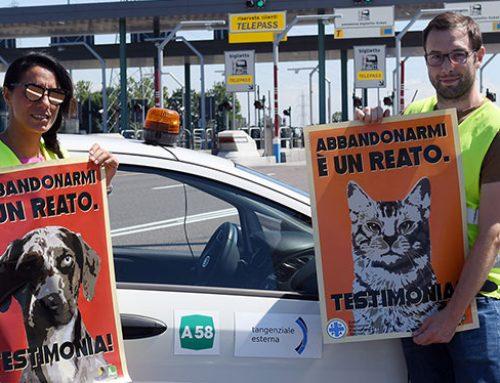 TE SPA ADERISCE ALLA CAMPAGNA ENPA «ABBANDONARMI È UN REATO. TESTIMONIA!» SU A58 VIGILANZA RADDOPPIATA NEI WEEK-END DA BOLLINO NERO
